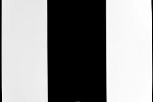 C4-SFP1-WH